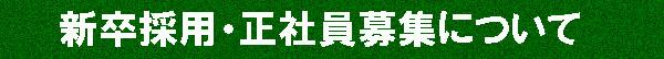 shinsotsu