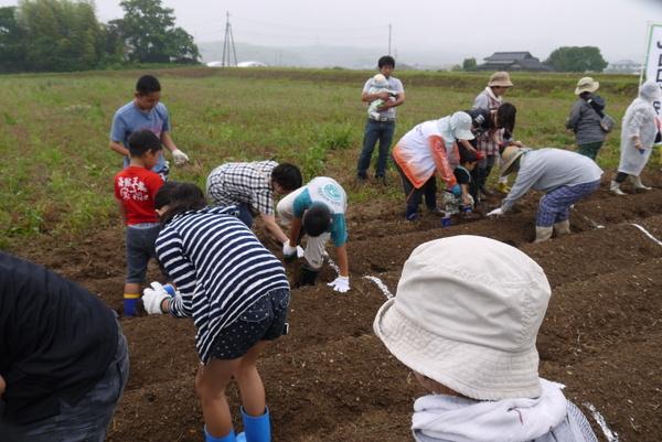 家族で大豆を育てよう!。種植えを行いました。