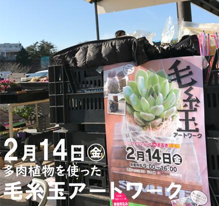 毛糸玉アイキャッチ改